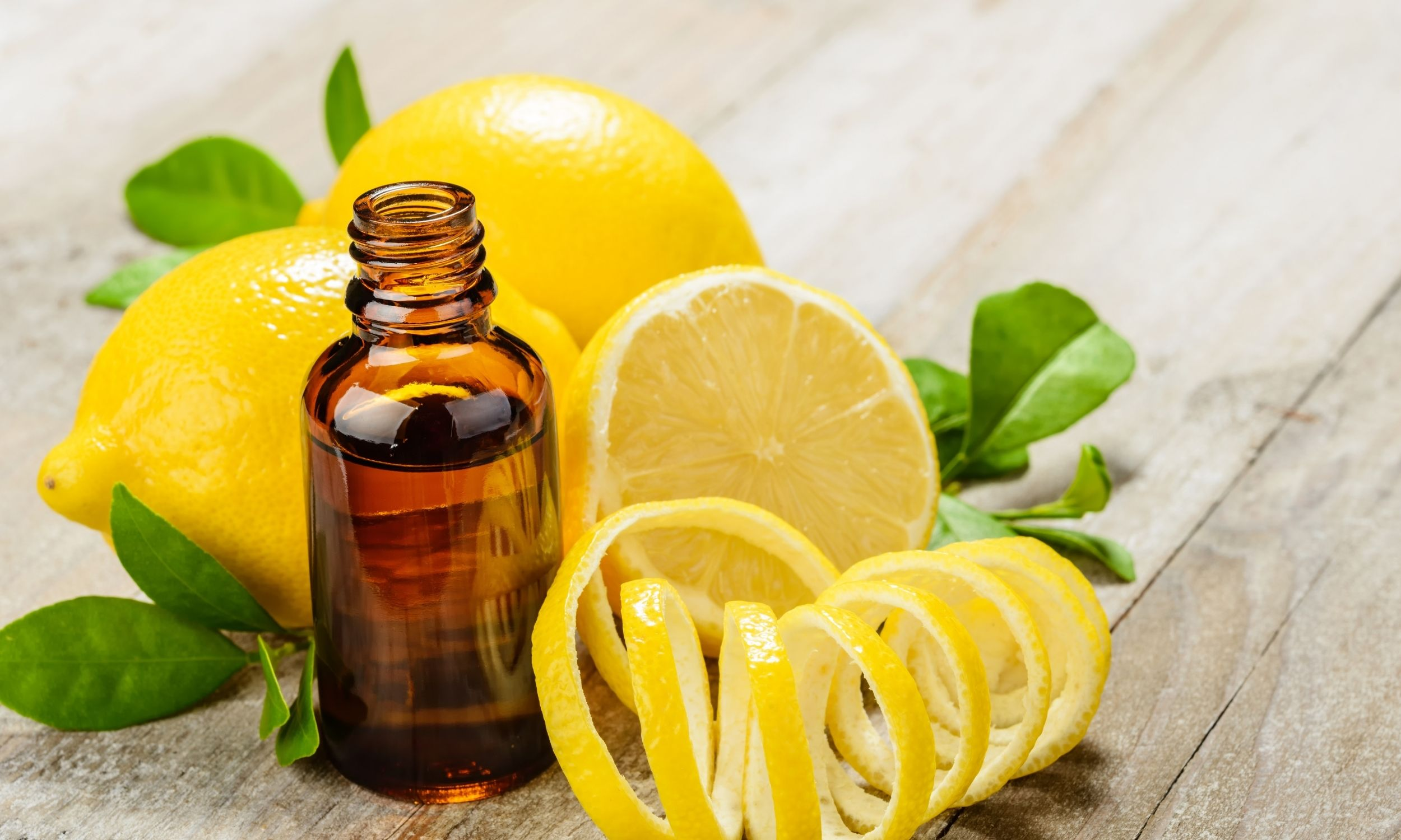 everything guide to essential oils